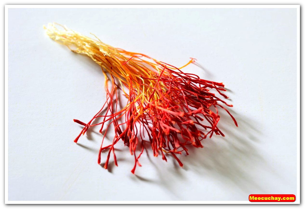 Nhuy-hoa-nghe-tay-saffron-iran (16)