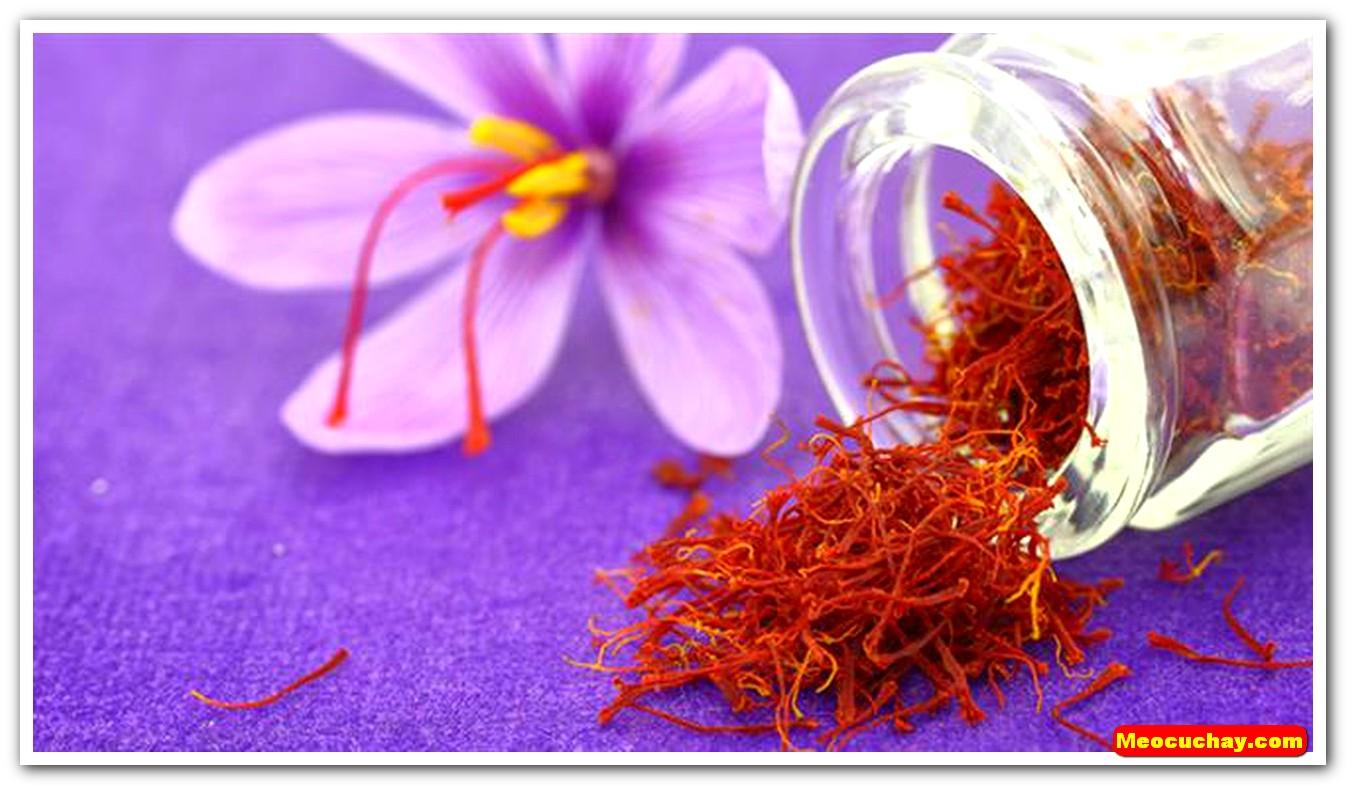 Nhuy-hoa-nghe-tay-saffron-iran (30)