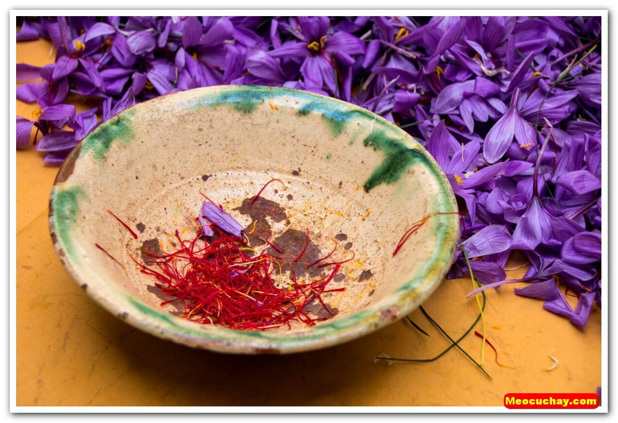 Nhuy-hoa-nghe-tay-saffron-iran (47)