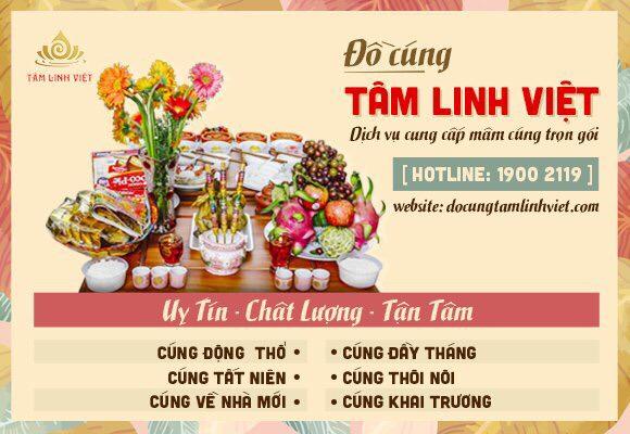 Banner Do Cung Tam Linh Viet
